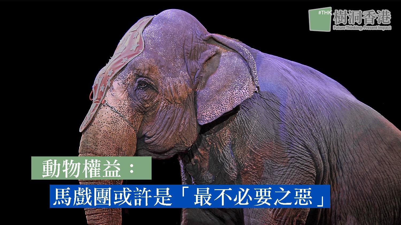 動物權益:馬戲團或許是「最不必要之惡」 2